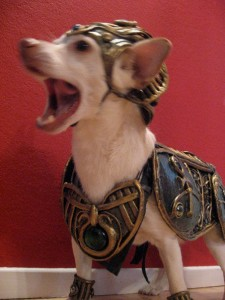Drive By Wire >> Anubis, Dog God of Halloween – Organic Armor